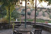 Cenadores y patios