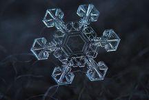 Snow Flakes ❄️