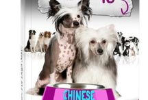 CHINESE CRESTED <3 PUPPY LOVE <3 / by Elysia Lebedoff