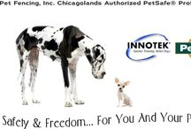 A+ Underground Pet Fencing Inc. Illinois Dog Fence Dealer & Store / Thank you for inquiring about our pet safety products and services. My name is Scott Smith, president of A+ Underground Pet Fencing, Inc. Illinois Dog Fence Dealer & Store, your local Authorized PetSafe® Professional™ Dealer. Our company installs, trains and services PetSafe® Pro™'s best digital electronic pet fence containment systems for Du Page, Kane, Kendall, Lake, Cook and Will counties in Illinois.