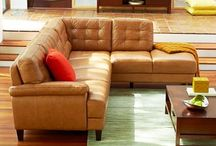 Couch for Hobbes / by Ms. Black