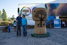 Cork Fair / Ficor. The cork fair at Coruche, Portugal