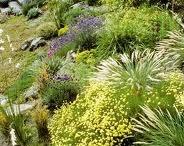 Garden of VistEden