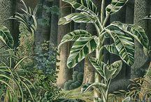 exotic mural