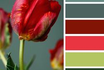 Fall Color Palettes / by techsytalk