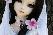Dolls / Dolls Lover