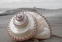 diy jew sea shell