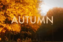 Fall/Autumn my favorite season / by Tina Johnson