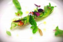 antipasti: zucchina rotolo