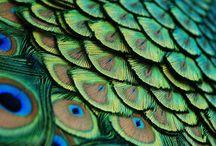 Art Inspiration   texture & patterns