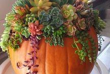 Design pumpkin