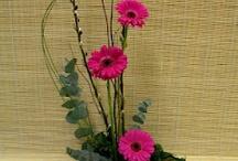 Trópusi virágok