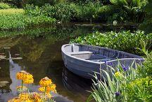 Inspiring - Pond