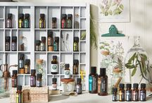 Wellness: Melaleuca-Ask Me! / I absolutely love Melaleuca's products. I've been a member of this great company for 6 years. Wellness for the home, you & your family in everyday products that you need. And now essential oils!