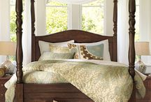 Master Bedroom / by Amberly Campbell