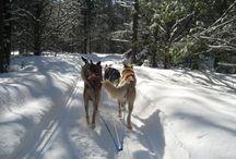 Winter adventures in Ontario