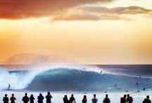 Surf&Travel