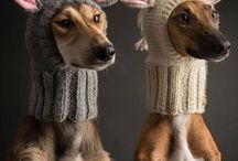 Animal knittings