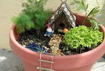 firly garden