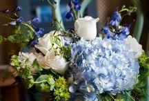 wedding things   / Weddings / by Cathy Gearhart