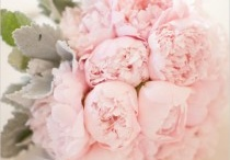 Wedding / by Lorraine Duffin