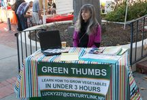 Green Thumbs / Green Thumbs at St Philips Plaza Farmers Market Every Saturday & Sunday