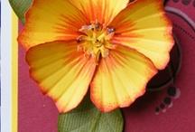 Gumpaste flowers / by Angelina Shulman