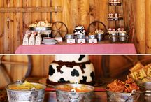 Chan's Texan Birthday. 15 / Ideas for Chantelle's birthday decor