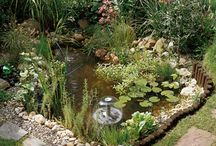 WATER ~ ponds ~estanques ~piscinas naturales