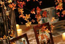 kiri autumn