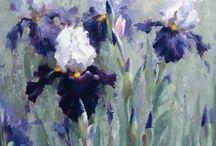 Fleurs iris violets