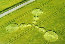 2.000 Crop Circles