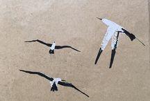 my work Sea birds www.coleajeremy.com #ink #sketch possibly make a good #mezzotint #print