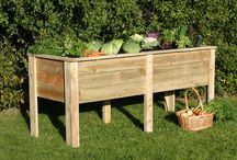 Grow Your Own / Grow your own produce with our exciting products