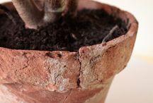 wabi-sabi plants /  Używane, niedoskonałe doniczki. Naturalne materiały i wszechobecna zieleń.