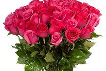 Růže a květiny