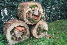 crea met boomstammen