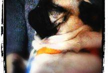 Carlino#dogs #cani