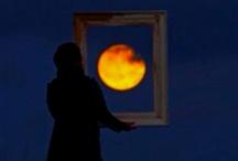 Full Moon / by Kathryn Bonner