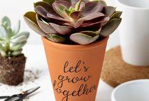 Tillyanna - plant pots / A range of plant pots by Tillyanna