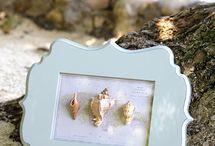 Sea shells / by Gail Schoenborn