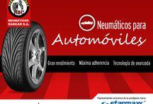 Neumáticos pasajeros