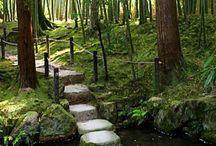 Travel Inspiration - Japan