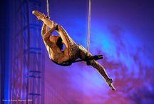 circus dayz