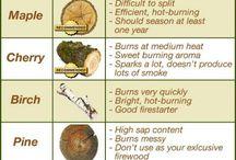 Descrizione legno
