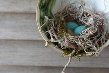 nestie things / by Melanie Wicker