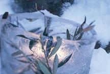Winter Fun / by Dana Markiewicz