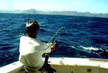 Рыбалка троллингом кижучи. Как ловят профессионалы.