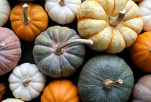 Awesome autumn recipes / It's that time of year again when the air gets crisper, the light more diffused and the pavements crunchier. Here at GNHQ we're celebrating autumn with lots of warming recipes an