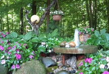 Gardening Tips and Ideas / by Sandy Freitag ༺♥♥♥༻